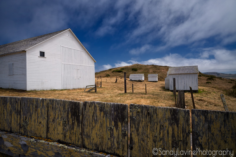Pierce Point Ranch Fence and Barn