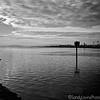 San Leandro Estuary