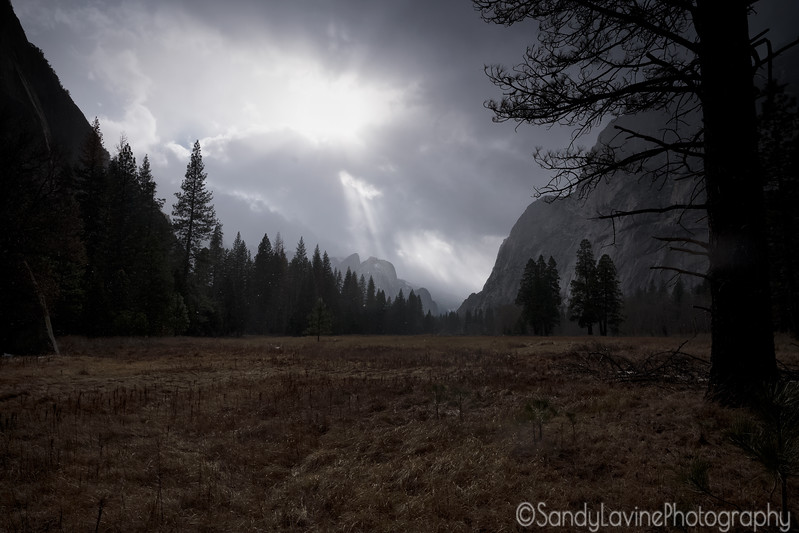 Cloudy Yosemite Valey Floor View