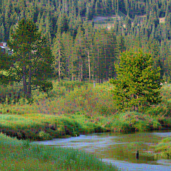 Squaw Creek Vista - Detail #3
