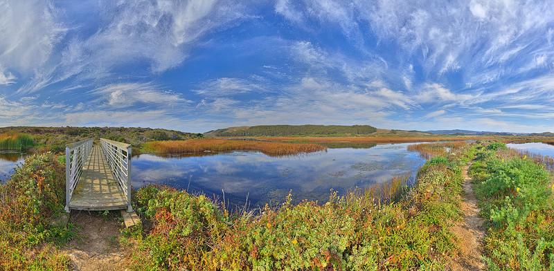 Pescadero Marsh Natural Preserve, Pescadero, CA