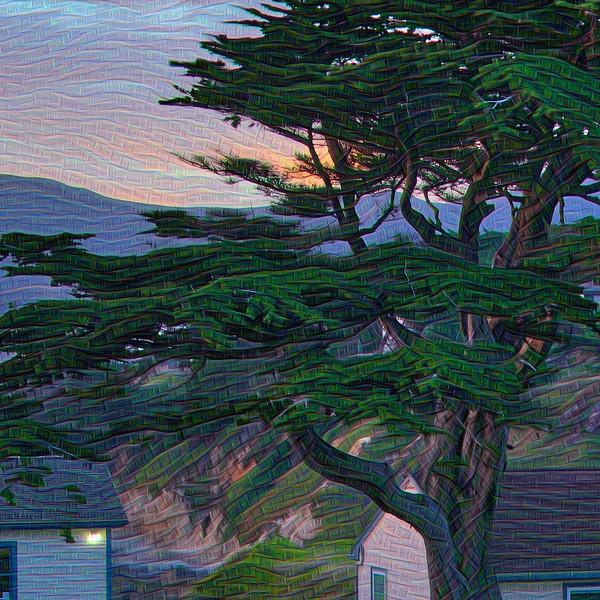 Point Montara Summer Solstice - Detail #3