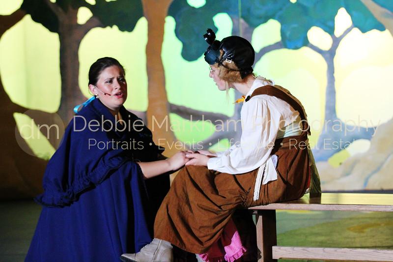 DebbieMarkhamPhotoHigh School Play Beauty and Beast060_.JPG