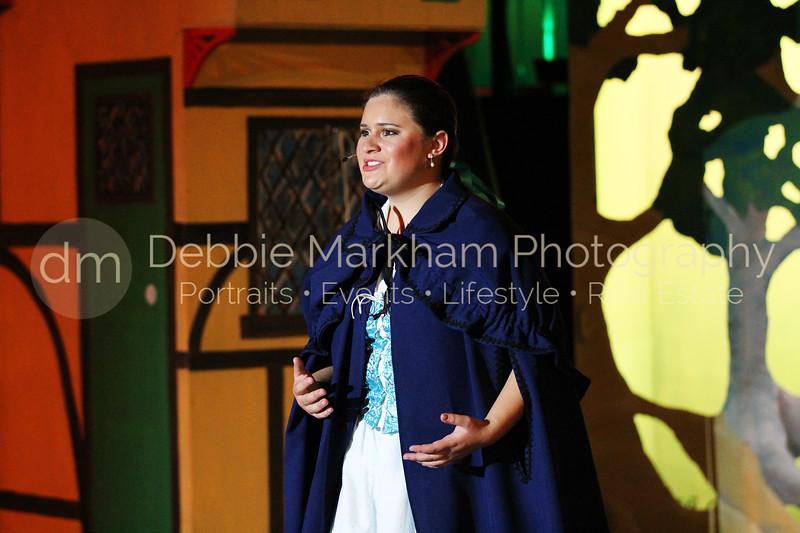 DebbieMarkhamPhotoHigh School Play Beauty and Beast061_.JPG