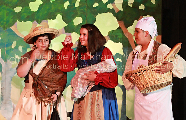 DebbieMarkhamPhoto-High School Play Beauty and the Beast205_
