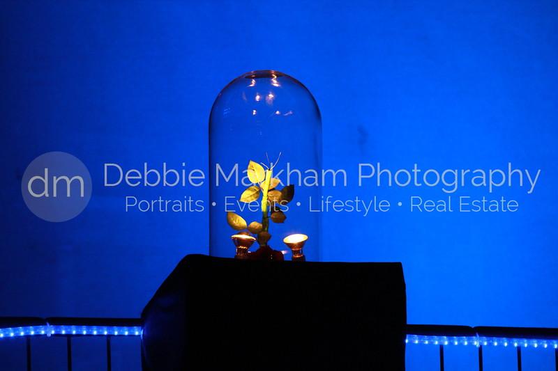 DebbieMarkhamPhotoHigh School Play Beauty and Beast104_.JPG