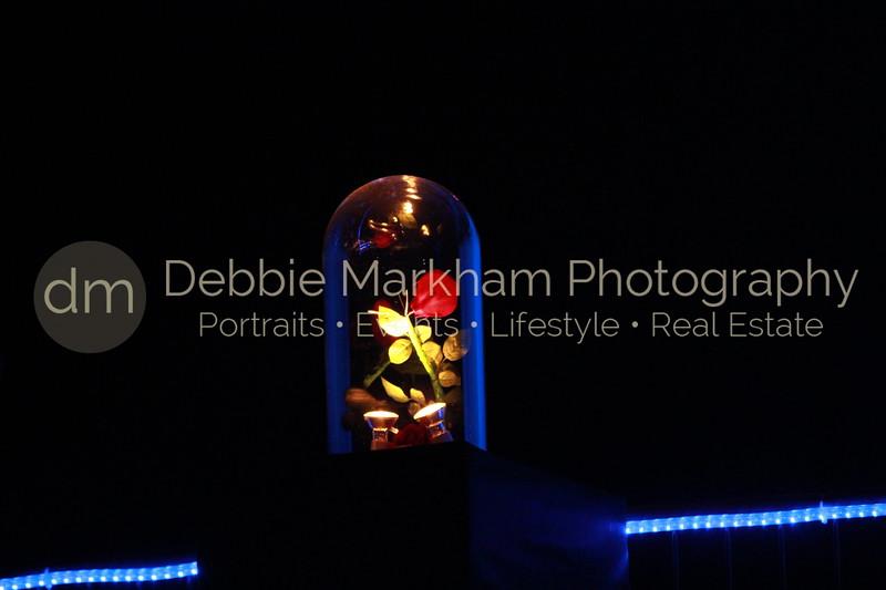 DebbieMarkhamPhotoHigh School Play Beauty and Beast100_.JPG