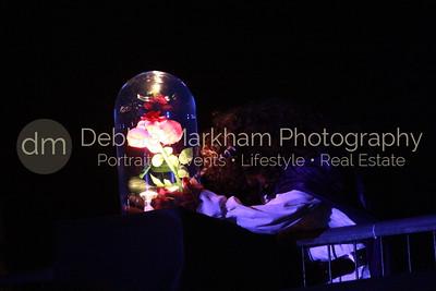 DebbieMarkhamPhoto-Opening Night Beauty and the Beast004_