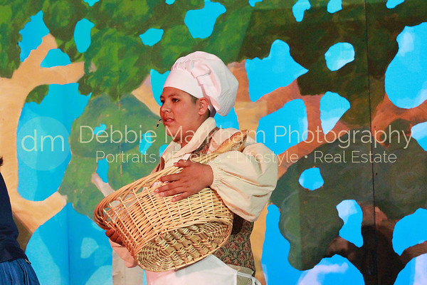 DebbieMarkhamPhoto-Opening Night Beauty and the Beast019_