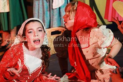 DebbieMarkhamPhoto-Opening Night Beauty and the Beast022_