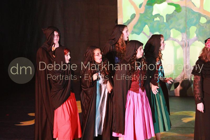 DebbieMarkhamPhoto-Saturday April 6-Beauty and the Beast042_.JPG