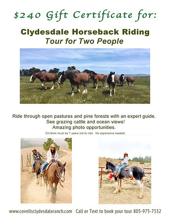 2 Clydesdale Ranch Covell Gift Certificate