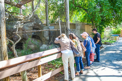 9-17-18 Atascadero Zoo University Women Cambria-9576