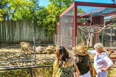9-17-18 Atascadero Zoo University Women Cambria-9591