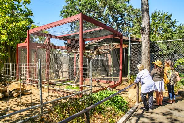 9-17-18 Atascadero Zoo University Women Cambria-9589