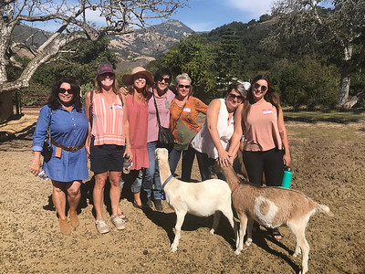 10-16-17 Stepladder Ranch IMG_0516