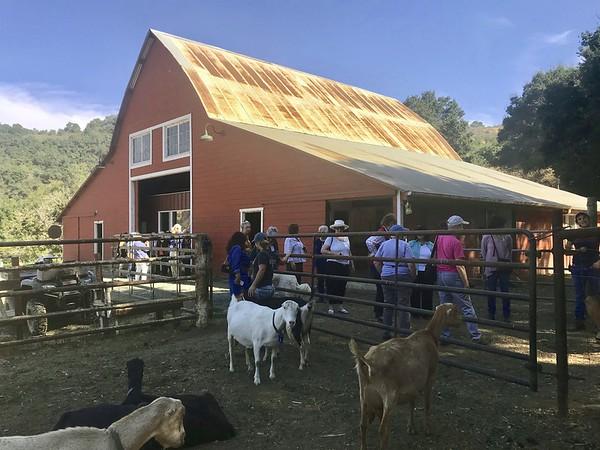 10-16-17 Stepladder Ranch IMG_E0492