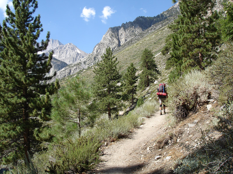 Jim on the North Fork trail; chaparral and pine zone.<br /> <br /> High Sierra: North Fork Big Pine Creek: Sam Mack Meadows: High Glacier Camp: Palisade Glacier: Palisades: Mount Sill: Swiss Arete