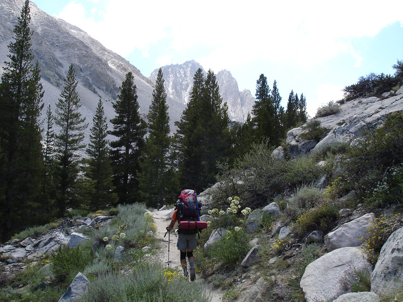 Temple Crag comes into view. Jim passing through Ranger's Buttons.<br /> <br /> High Sierra: North Fork Big Pine Creek: Sam Mack Meadows: High Glacier Camp: Palisade Glacier: Palisades: Mount Sill: Swiss Arete