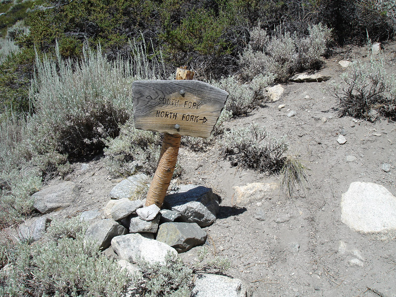 We follow he North Fork trail.<br /> <br /> High Sierra: North Fork Big Pine Creek: Sam Mack Meadows: High Glacier Camp: Palisade Glacier: Palisades: Mount Sill: Swiss Arete