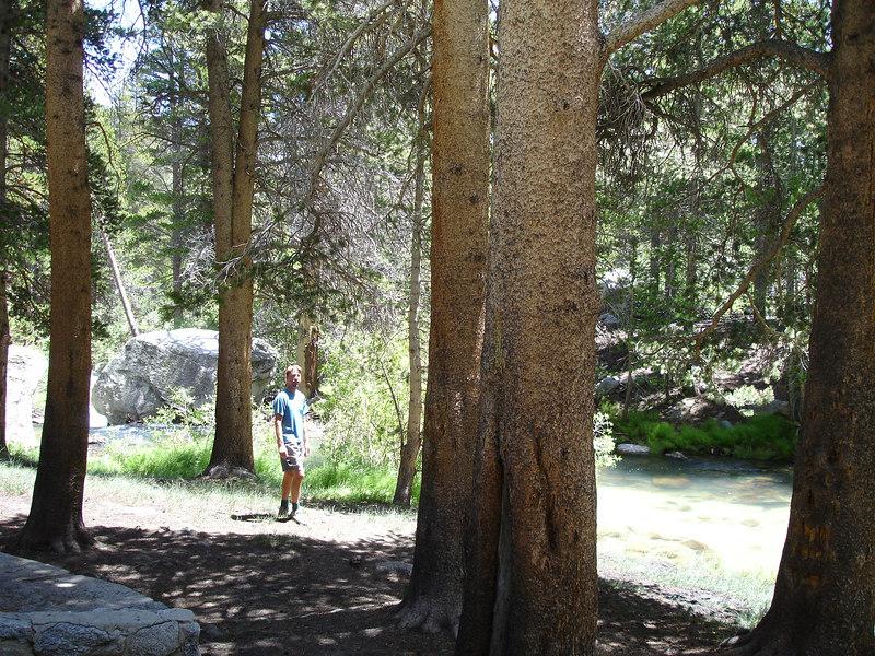 Hard core climber.<br /> <br /> High Sierra: North Fork Big Pine Creek: Sam Mack Meadows: High Glacier Camp: Palisade Glacier: Palisades: Mount Sill: Swiss Arete