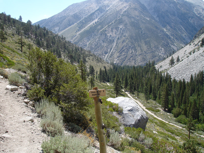 This fork in the trail leads to overnight parking.<br /> <br /> High Sierra: North Fork Big Pine Creek: Sam Mack Meadows: High Glacier Camp: Palisade Glacier: Palisades: Mount Sill: Swiss Arete