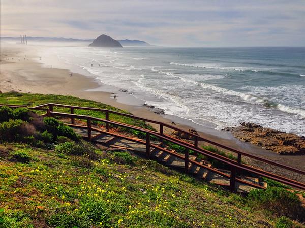 Morro Bay Dog Beach | Dog Friendly Central Coast