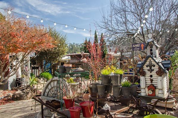 Grow: Succulent shop in Cambria, CA