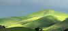 Dramatic Morning Light on Spring-Green Hills