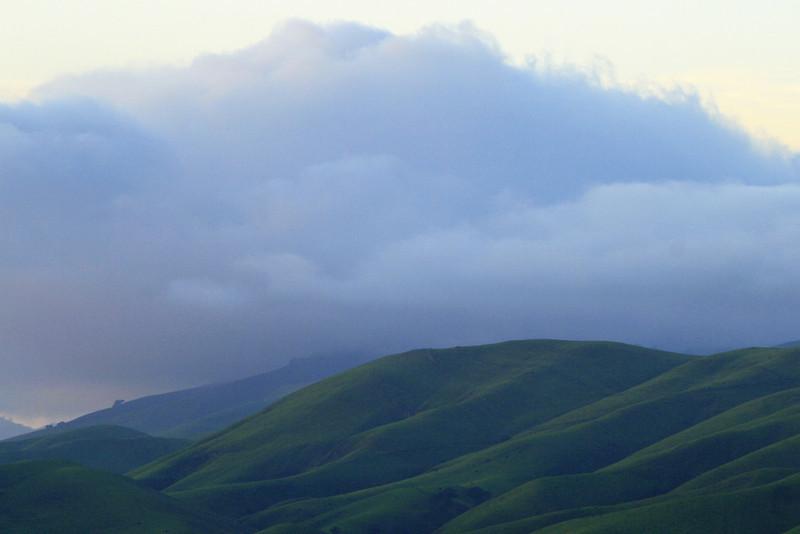 Green Springtime Hills and Fog, Livermore CA
