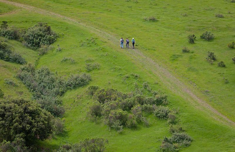 Hiking, Martinez CA