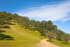 Spring Hillside, Round Valley Regional Park, Clayton CA