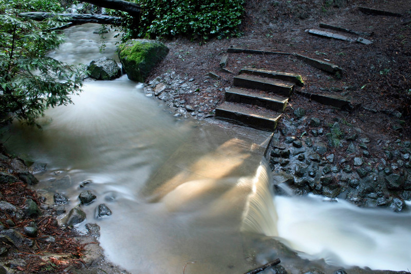 Light Beam over Crossing, Sausal Creek, Oakland CA