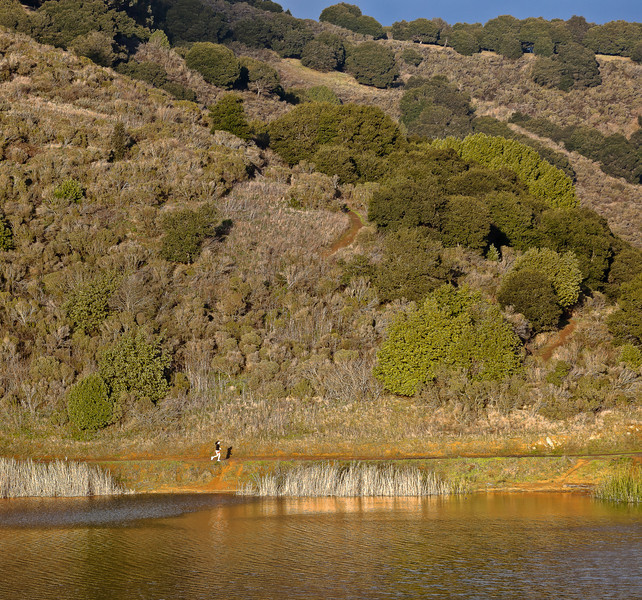 Jogging around Lake Chabot, Oakland CA
