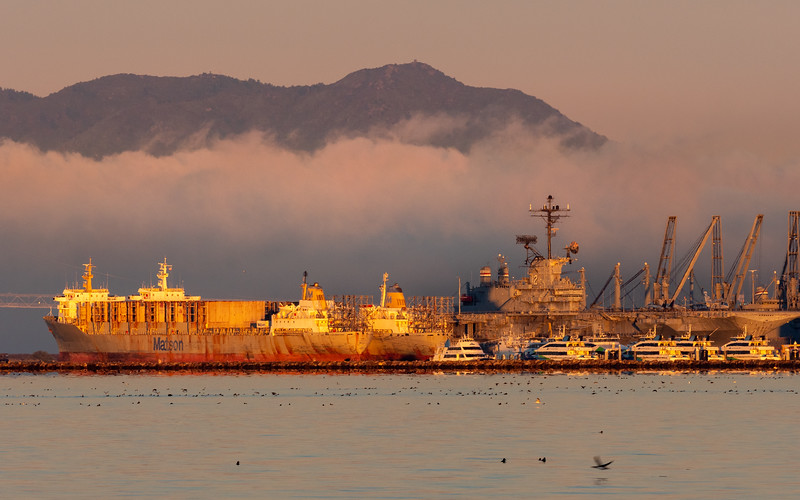 Waterfowl, Port of Oakland, and Mt Tamalpais With Fog over SF Bay