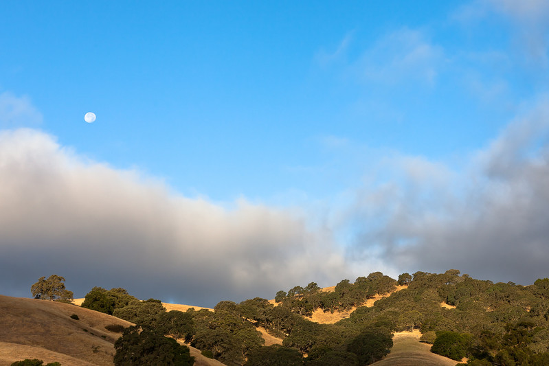 Rolling Hills, Clearing Fog, Setting Moon, Solano County CA