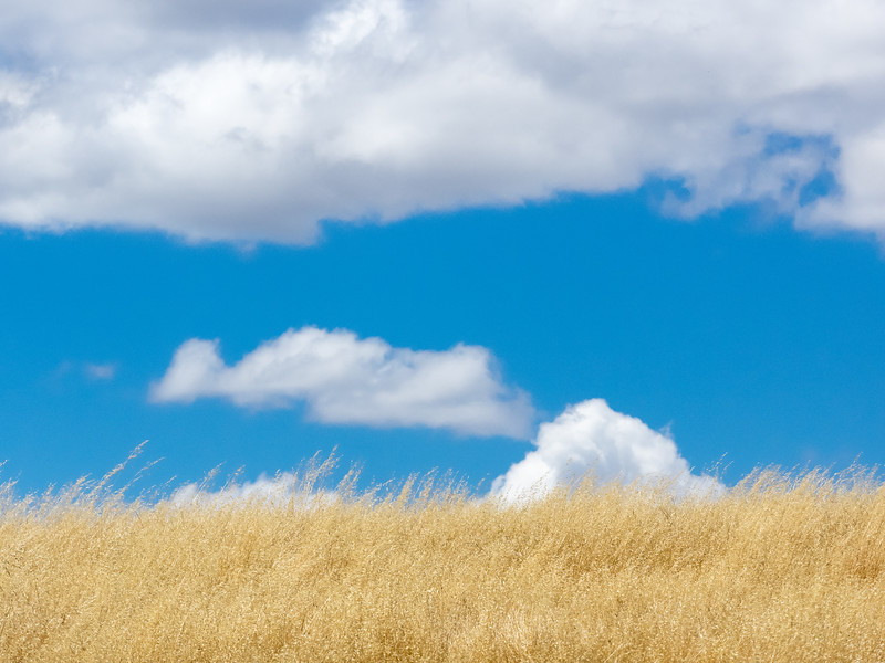Clouds and Golden Fields Abstract