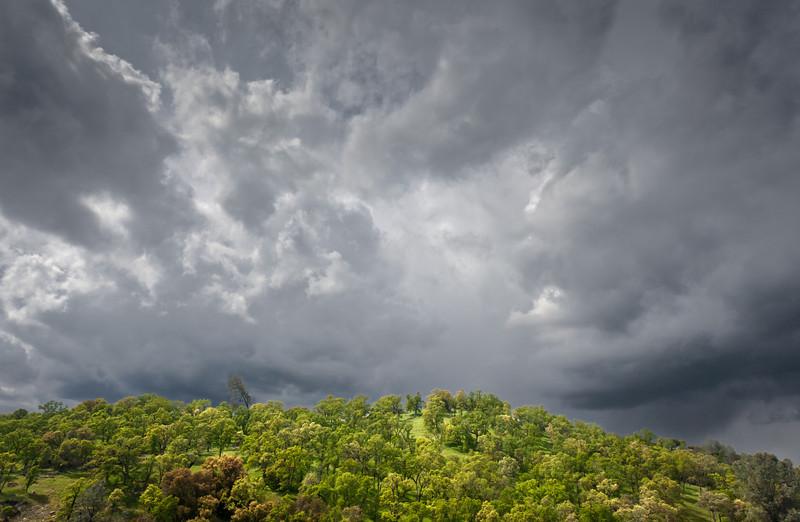 Spring Green and Stormy Sky, El Dorado County CA