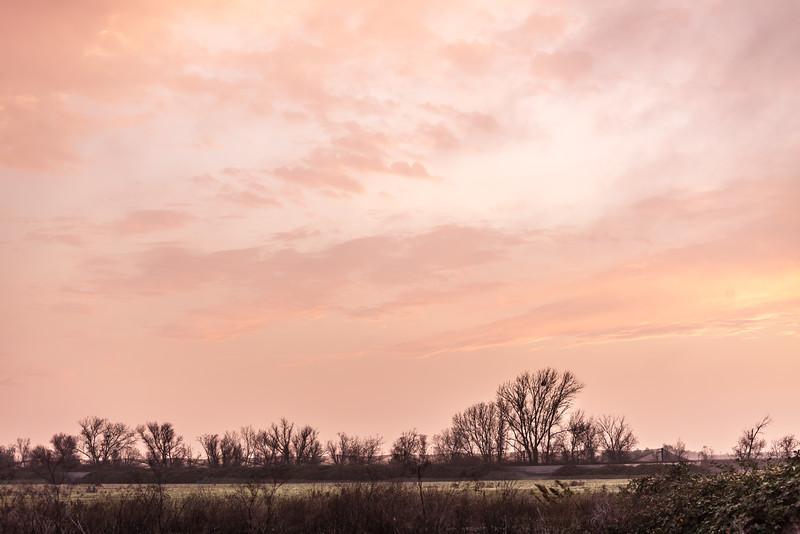 Winter Sunset, Woodbridge Bird Preserve, Woodbridge CA
