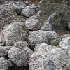Rocks Near Stanislaus River