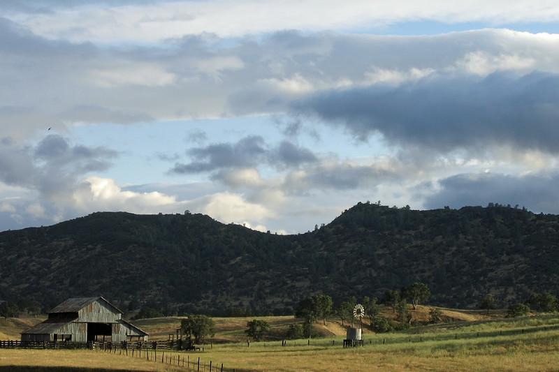 Rural Scene and Late Afternoon Light, Near Stonyford CA