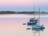Moored Boats, Morro Bay CA