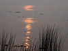 Smoky Sun Reflecting in Delta Waters