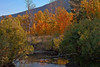 Autumn Scene at Green Creek in the Eastern Sierras, CA