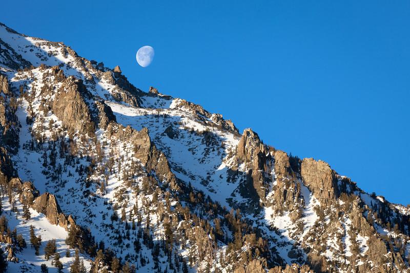 Setting Moon Near Twin Lakes, Eastern Sierras CA