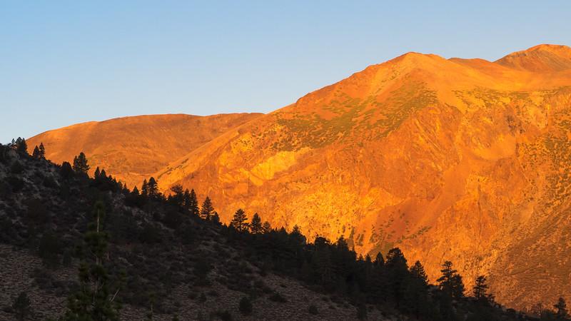 Morning Alpenglow, Near Parker Lake CA
