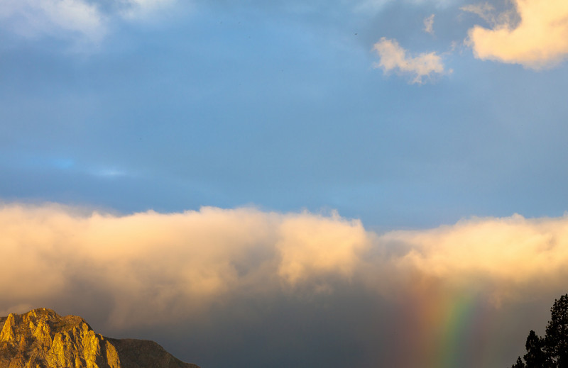 Rainbow, Clouds, Tree, Mountaintop, Near June Lake CA