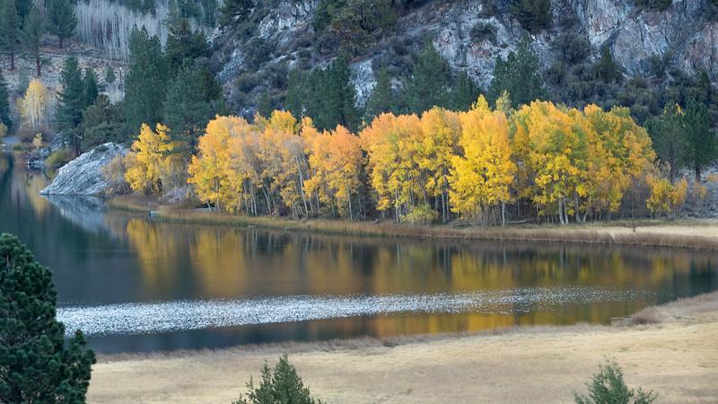Autumn Aspens and WInd Skimming Across Gull Lake, June Lake CA