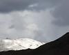Fresh Snow, North of Reno NV