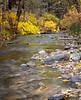 Small Creek in Late Fall
